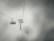 Jour blanc par Nicolas Spuhler
