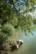 pêche aux écrevisses par Nicolas Spuhler