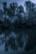 l'étang par Nicolas Spuhler