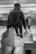 La monte du cheval sauvage par Pierre Montant