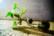 Luz verde par Rodrigo Alonso