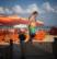 Son of a beach par Yoram Salamon