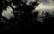 ondes 3 par John Grinling