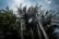 Jardin botanique par Nicolas Spuhler