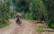 Día de campo en Los humedales de San Luis (Xochimilco) par Rodrigo Alonso