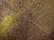 Môtiers – Art aborigène australien par John Grinling