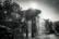 Carouge par Nicolas Spuhler