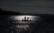 Baptisé le lézard Jésus-Christ, il court sur l'eau par Michel Bruno