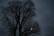 Lune humide par Nicolas Spuhler