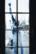 vitre par Nicolas Spuhler