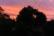 Another pink sunset par Anna Salzmann