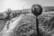 44°42'2.1867″ N 4°43'43.2123″ E par Tristan Zilberman