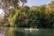 nature, 3 par Pierre Montant