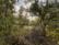 Gard par Nicolas Spuhler