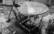 Les sanglots longs des vi-o-lons… par Gérard Dubois